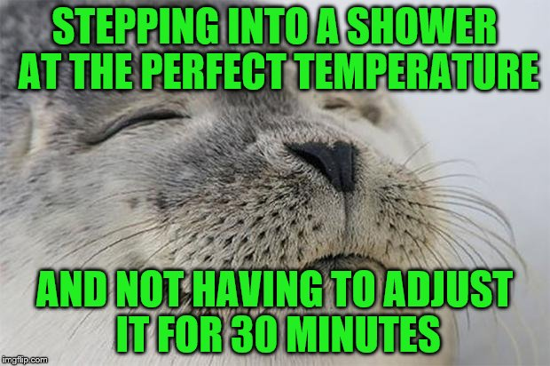 Satisfied Seal Meme | STEPPING INTO A SHOWER AT THE PERFECT TEMPERATURE AND NOT HAVING TO ADJUST IT FOR 30 MINUTES | image tagged in memes,satisfied seal | made w/ Imgflip meme maker