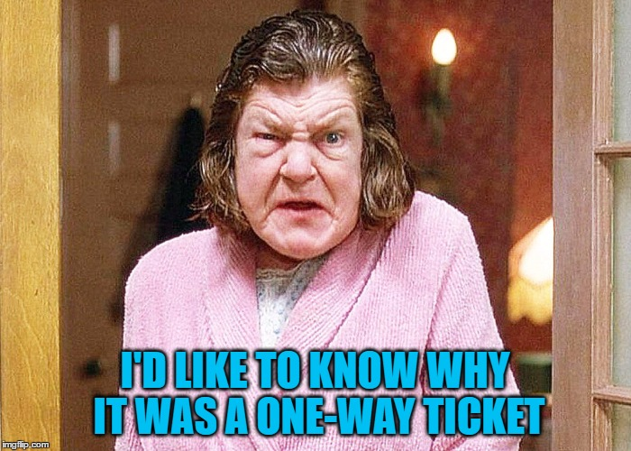 I'D LIKE TO KNOW WHY IT WAS A ONE-WAY TICKET | made w/ Imgflip meme maker