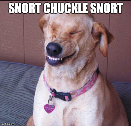 SNORT CHUCKLE SNORT | made w/ Imgflip meme maker