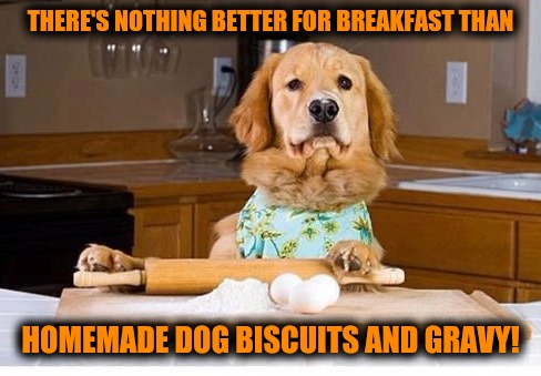 Dog Week. Breakfast time! | THERE'S NOTHING BETTER FOR BREAKFAST THAN HOMEMADE DOG BISCUITS AND GRAVY! | image tagged in dog week,food,breakfast | made w/ Imgflip meme maker