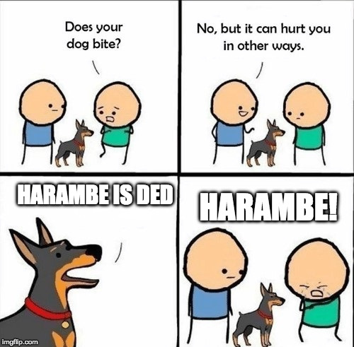 La sed truth | HARAMBE IS DED HARAMBE! | image tagged in does your dog bite,harambe,rip harambe,dog week,dog,memes | made w/ Imgflip meme maker