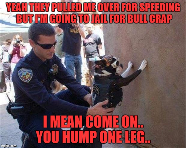YEAH THEY PULLED ME OVER FOR SPEEDING BUT I'M GOING TO JAIL FOR BULL CRAP I MEAN COME ON.. YOU HUMP ONE LEG.. | made w/ Imgflip meme maker