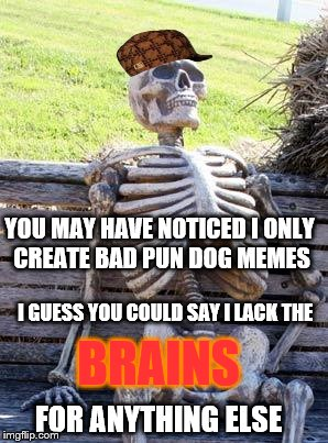 Waiting Skeleton Meme | YOU MAY HAVE NOTICED I ONLY CREATE BAD PUN DOG MEMES I GUESS YOU COULD SAY I LACK THE BRAINS FOR ANYTHING ELSE | image tagged in memes,waiting skeleton,scumbag | made w/ Imgflip meme maker