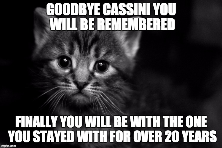U will remain in our hearts forever | GOODBYE CASSINI YOU WILL BE REMEMBERED FINALLY YOU WILL BE WITH THE ONE YOU STAYED WITH FOR OVER 20 YEARS | image tagged in sad cat,cassini spacecraft,saturn | made w/ Imgflip meme maker