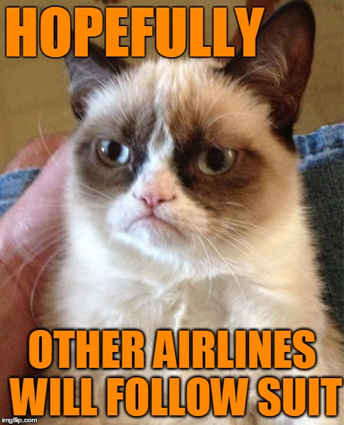 Grumpy Cat Meme | HOPEFULLY OTHER AIRLINES WILL FOLLOW SUIT | image tagged in memes,grumpy cat | made w/ Imgflip meme maker