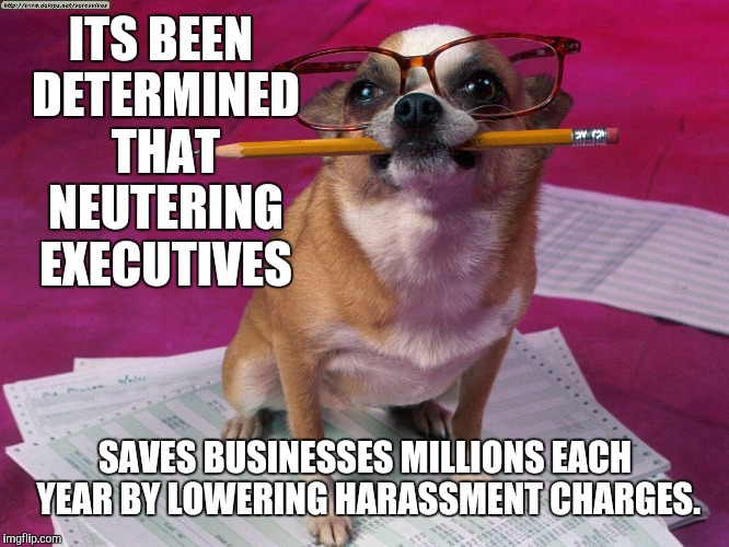 ITS BEEN DETERMINED THAT NEUTERING EXECUTIVES SAVES BUSINESSES MILLIONS EACH YEAR BY LOWERING HARASSMENT CHARGES. | made w/ Imgflip meme maker