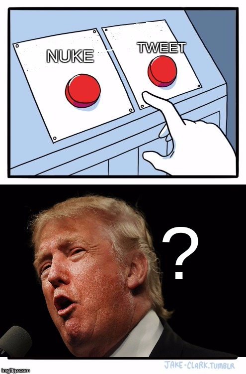Trump's two buttons in the big office.  | NUKE TWEET ? | image tagged in two buttons blank | made w/ Imgflip meme maker