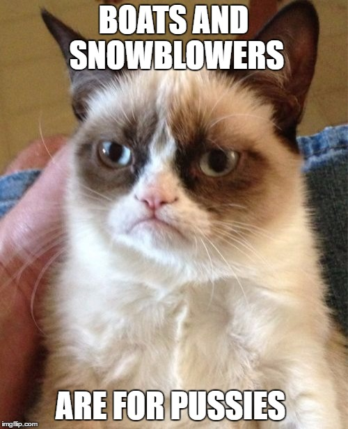 Grumpy Cat Meme | BOATS AND SNOWBLOWERS ARE FOR PUSSIES | image tagged in memes,grumpy cat | made w/ Imgflip meme maker