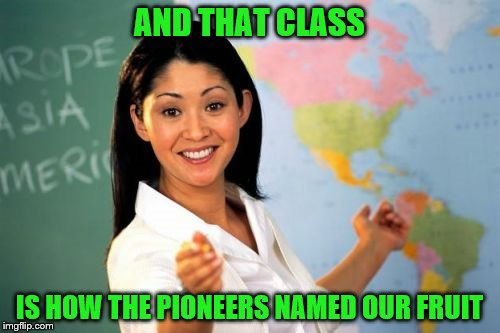 AND THAT CLASS IS HOW THE PIONEERS NAMED OUR FRUIT | made w/ Imgflip meme maker
