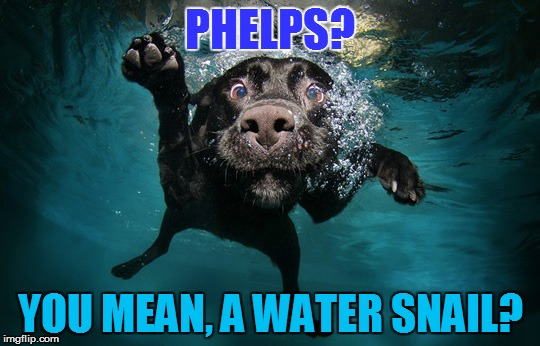 PHELPS? YOU MEAN, A WATER SNAIL? | made w/ Imgflip meme maker