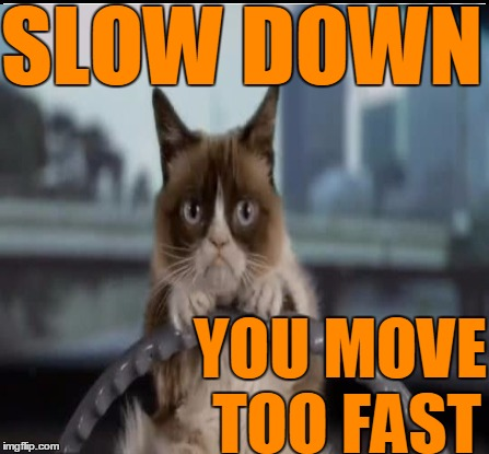 SLOW DOWN YOU MOVE TOO FAST | made w/ Imgflip meme maker