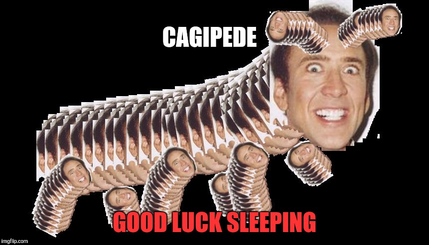 Cagipede | CAGIPEDE GOOD LUCK SLEEPING | image tagged in cagipede,memes,nicolas cage | made w/ Imgflip meme maker