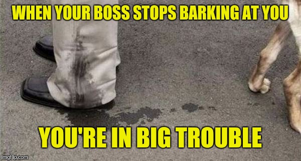WHEN YOUR BOSS STOPS BARKING AT YOU YOU'RE IN BIG TROUBLE | made w/ Imgflip meme maker
