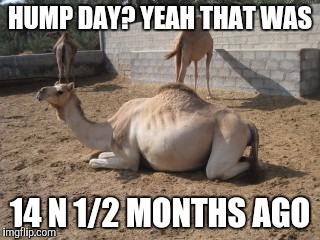 HUMP DAY? YEAH THAT WAS 14 N 1/2 MONTHS AGO | made w/ Imgflip meme maker