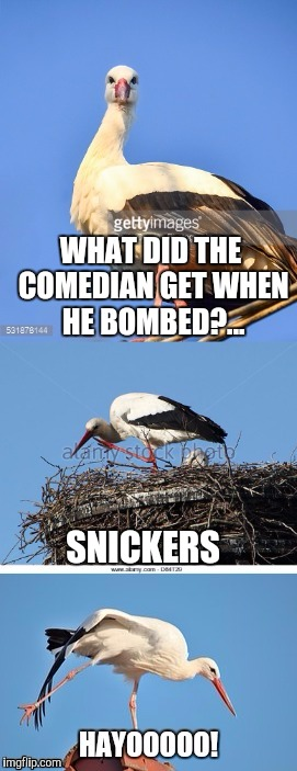 Bad Pun Stork | WHAT DID THE COMEDIAN GET WHEN HE BOMBED?... SNICKERS | image tagged in bad pun stork | made w/ Imgflip meme maker