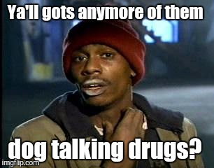 Y'all Got Any More Of That Meme | Ya'll gots anymore of them dog talking drugs? | image tagged in memes,yall got any more of | made w/ Imgflip meme maker