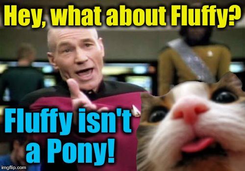 Hey, what about Fluffy? Fluffy isn't a Pony! | made w/ Imgflip meme maker