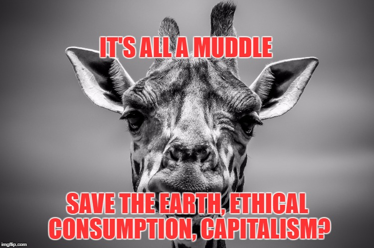 IT'S ALL A MUDDLE SAVE THE EARTH, ETHICAL CONSUMPTION, CAPITALISM? | image tagged in ethical consumption,capitalism,confusion,save the earth,sustainability | made w/ Imgflip meme maker