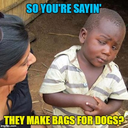 Third World Skeptical Kid Meme | SO YOU'RE SAYIN' THEY MAKE BAGS FOR DOGS? | image tagged in memes,third world skeptical kid | made w/ Imgflip meme maker