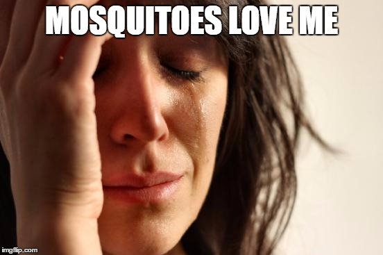 First World Problems Meme | MOSQUITOES LOVE ME | image tagged in memes,first world problems | made w/ Imgflip meme maker