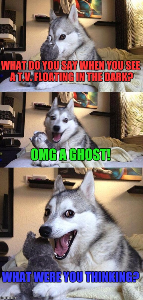 What were you thinking? | WHAT DO YOU SAY WHEN YOU SEE A T.V. FLOATING IN THE DARK? OMG A GHOST! WHAT WERE YOU THINKING? | image tagged in memes,bad pun dog,funny | made w/ Imgflip meme maker