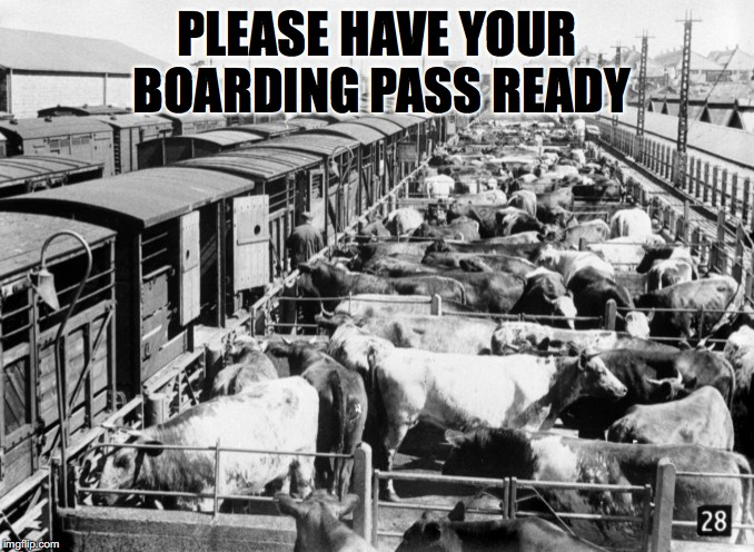 PLEASE HAVE YOUR BOARDING PASS READY | made w/ Imgflip meme maker