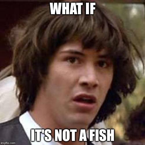 Conspiracy Keanu Meme | WHAT IF IT'S NOT A FISH | image tagged in memes,conspiracy keanu | made w/ Imgflip meme maker