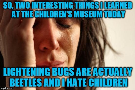 One out of two isn't too bad, is it? | SO, TWO INTERESTING THINGS I LEARNED AT THE CHILDREN'S MUSEUM TODAY LIGHTENING BUGS ARE ACTUALLY BEETLES AND I HATE CHILDREN | image tagged in memes,first world problems | made w/ Imgflip meme maker