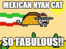 taco cat |  MEXICAN NYAN CAT; SO FABULOUS!! | image tagged in taco cat | made w/ Imgflip meme maker