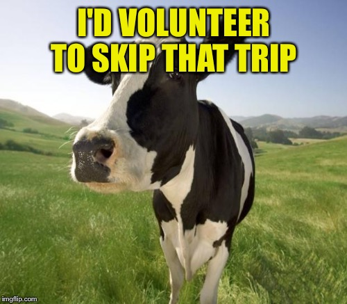 I'D VOLUNTEER TO SKIP THAT TRIP | made w/ Imgflip meme maker