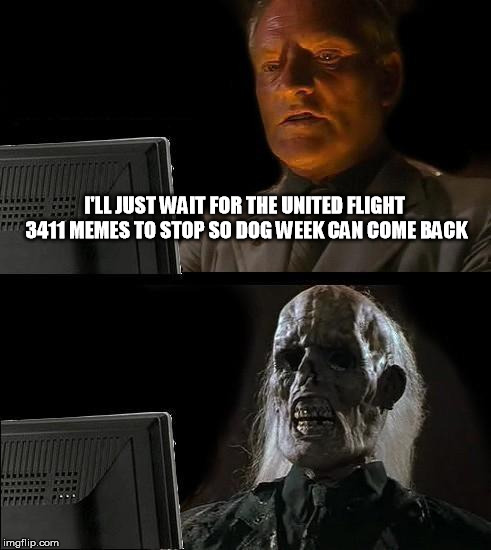 Maybe Dog week can get an extension | I'LL JUST WAIT FOR THE UNITED FLIGHT 3411 MEMES TO STOP SO DOG WEEK CAN COME BACK | image tagged in memes,ill just wait here,dog week,united airlines passenger removed | made w/ Imgflip meme maker
