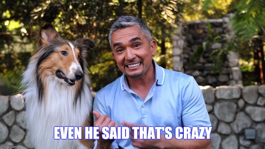 EVEN HE SAID THAT'S CRAZY | made w/ Imgflip meme maker