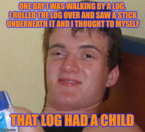 10 Guy Meme | ONE DAY I WAS WALKING BY A LOG, I ROLLED THE LOG OVER AND SAW A STICK UNDERNEATH IT AND I THOUGHT TO MYSELF THAT LOG HAD A CHILD | image tagged in memes,10 guy | made w/ Imgflip meme maker