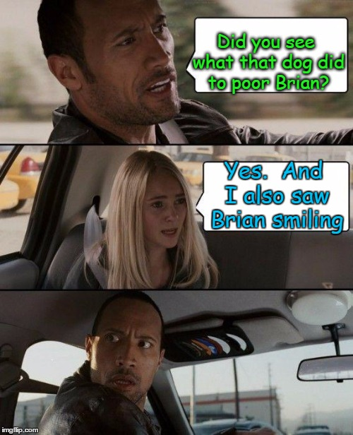The Rock Driving Meme | Did you see what that dog did to poor Brian? Yes.  And I also saw Brian smiling | image tagged in memes,the rock driving | made w/ Imgflip meme maker