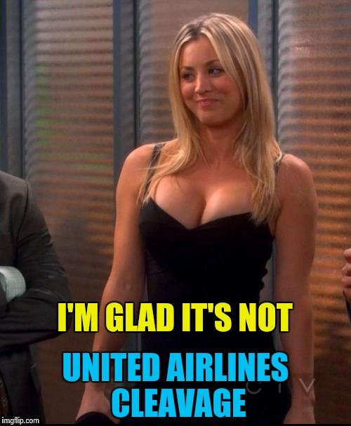 Hot Penny | I'M GLAD IT'S NOT UNITED AIRLINES CLEAVAGE | image tagged in hot penny | made w/ Imgflip meme maker