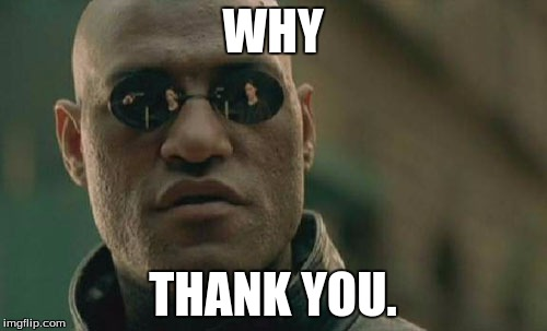 Matrix Morpheus Meme | WHY THANK YOU. | image tagged in memes,matrix morpheus | made w/ Imgflip meme maker