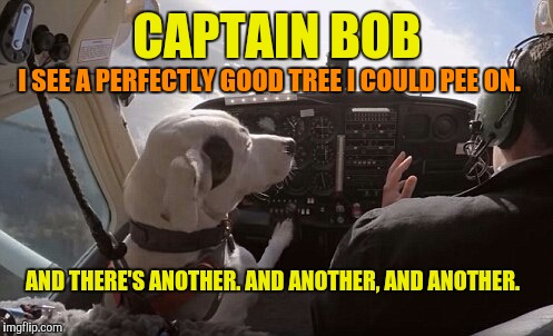 CAPTAIN BOB I SEE A PERFECTLY GOOD TREE I COULD PEE ON. AND THERE'S ANOTHER. AND ANOTHER, AND ANOTHER. | made w/ Imgflip meme maker