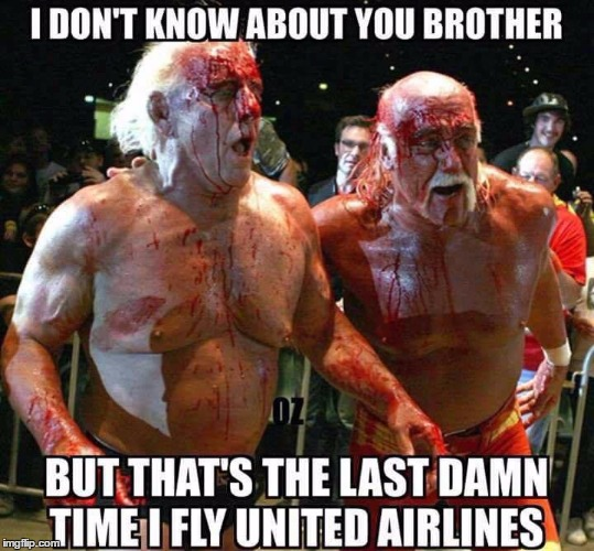image tagged in wwe,united airlines,funny | made w/ Imgflip meme maker