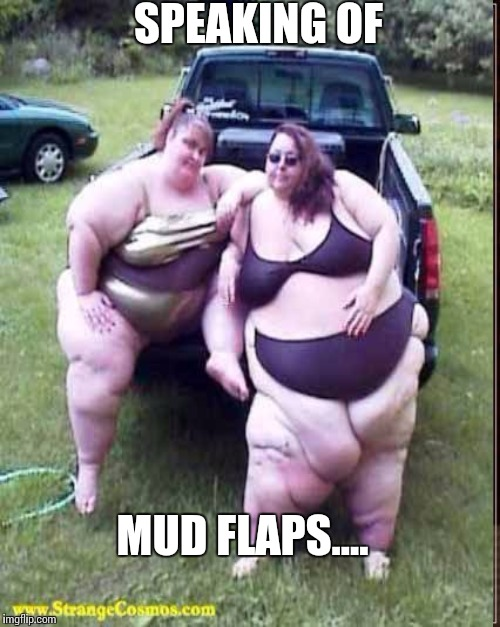 SPEAKING OF MUD FLAPS.... | made w/ Imgflip meme maker