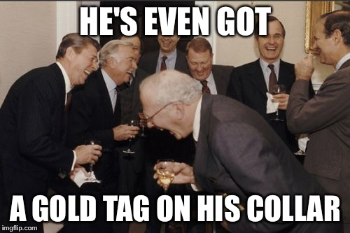 Laughing Men In Suits Meme | HE'S EVEN GOT A GOLD TAG ON HIS COLLAR | image tagged in memes,laughing men in suits | made w/ Imgflip meme maker
