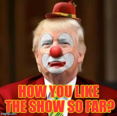 Donald Trump Clown |  HOW YOU LIKE THE SHOW SO FAR? | image tagged in donald trump clown | made w/ Imgflip meme maker