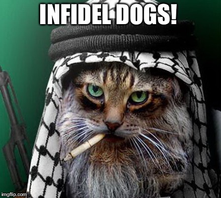 Sarcastic Terrorist Cat | INFIDEL DOGS! | image tagged in sarcastic terrorist cat | made w/ Imgflip meme maker