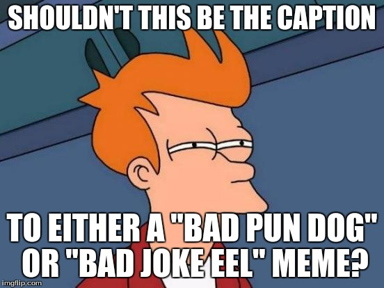 "Futurama Fry Meme | SHOULDN'T THIS BE THE CAPTION TO EITHER A ""BAD PUN DOG"" OR ""BAD JOKE EEL"" MEME? 