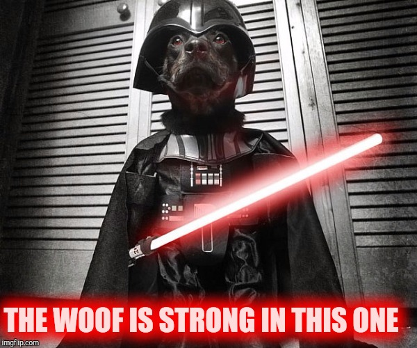 THE WOOF IS STRONG IN THIS ONE | image tagged in dog vader | made w/ Imgflip meme maker