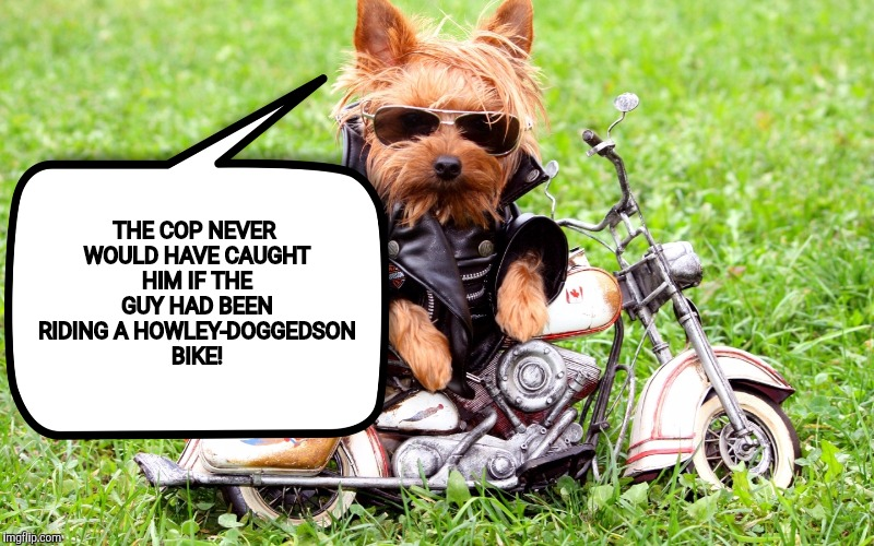 THE COP NEVER WOULD HAVE CAUGHT HIM IF THE GUY HAD BEEN RIDING A HOWLEY-DOGGEDSON BIKE! | made w/ Imgflip meme maker