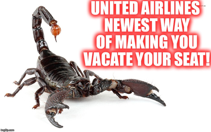 1n86vu image tagged in united' newest employee scorpion imgflip
