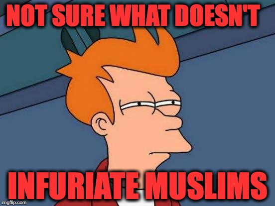 Futurama Fry Meme | NOT SURE WHAT DOESN'T INFURIATE MUSLIMS | image tagged in memes,futurama fry | made w/ Imgflip meme maker