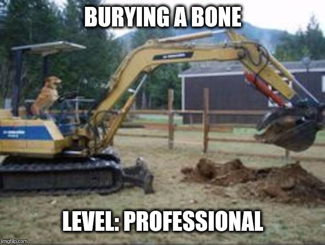 Anyone else have trouble with their dog digging up the yard? | BURYING A BONE LEVEL: PROFESSIONAL | image tagged in backhoe dog,dog week | made w/ Imgflip meme maker