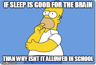 Thinking Homer | IF SLEEP IS GOOD FOR THE BRAIN THAN WHY ISNT IT ALLOWED IN SCHOOL | image tagged in thinking homer | made w/ Imgflip meme maker