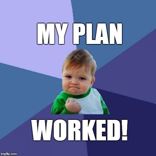 Success Kid Meme | MY PLAN WORKED! | image tagged in memes,success kid | made w/ Imgflip meme maker
